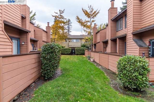 26594 Sunvale Ct, Hayward, CA 94544 (#BE40890177) :: Strock Real Estate