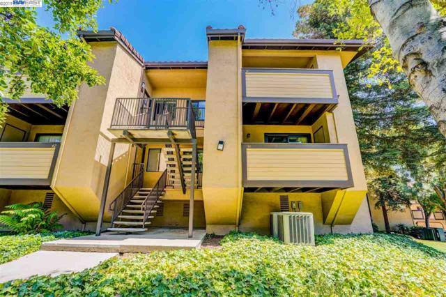 38 Shaniko Cmn, Fremont, CA 94539 (#BE40871059) :: Strock Real Estate