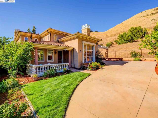 350 Mackintosh Ter, Fremont, CA 94539 (#BE40878700) :: Intero Real Estate