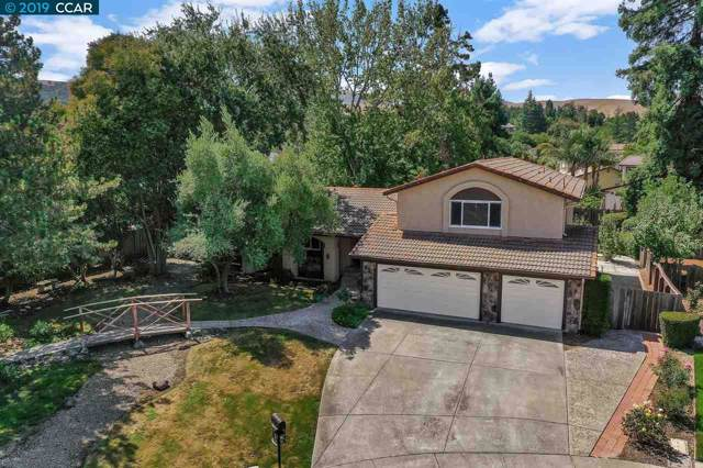 90 Caravan Pl, San Ramon, CA 94583 (#CC40881479) :: The Sean Cooper Real Estate Group