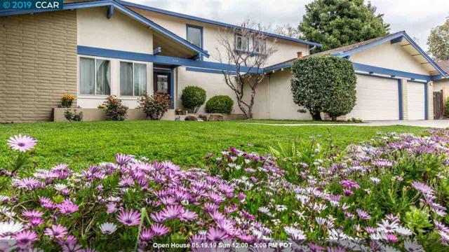 519 Banyan Cir, Walnut Creek, CA 94598 (#CC40859930) :: Strock Real Estate