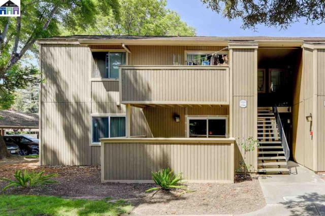 37290 Spruce Terrace, Fremont, CA 94536 (#MR40865643) :: The Kulda Real Estate Group