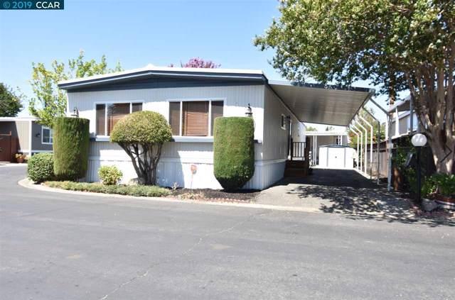 185 Medina Drive, PACHECO, CA 94553 (#CC40879870) :: Strock Real Estate