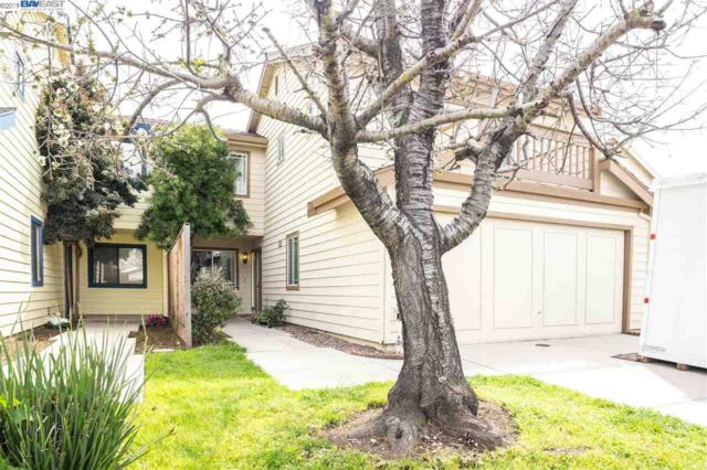 3934 Scamman Ct, Fremont, CA 94538 (#BE40859690) :: Strock Real Estate