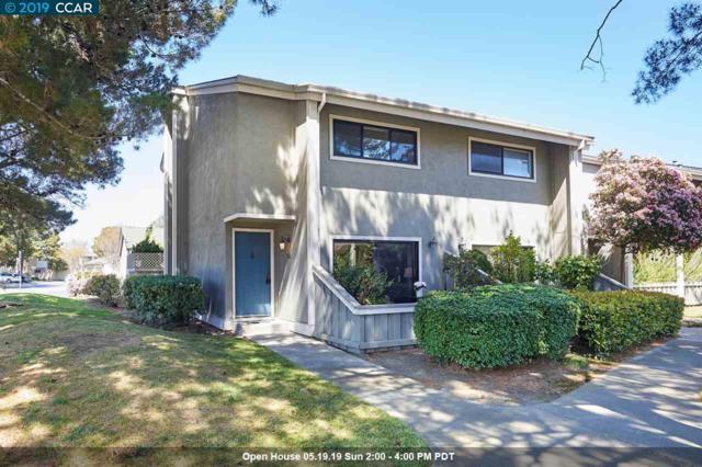 802 Antares Ln, Foster City, CA 94404 (#CC40860673) :: The Warfel Gardin Group
