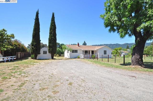 715 Sycamore Rd, Pleasanton, CA 94566 (#BE40869963) :: Intero Real Estate