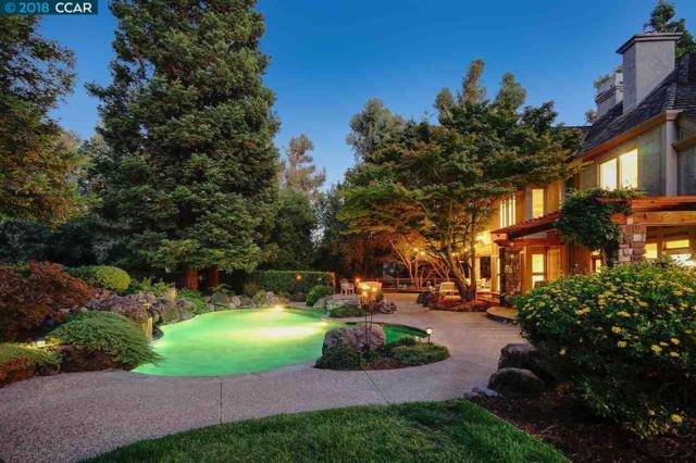 5495 Blackhawk Drive, Danville, CA 94506 (#CC40808326) :: Strock Real Estate