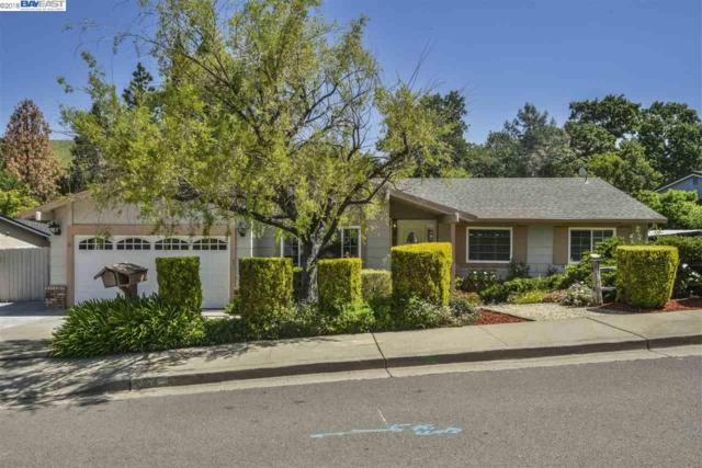 33 Petar Ct, Clayton, CA 94517 (#BE40815697) :: The Dale Warfel Real Estate Network