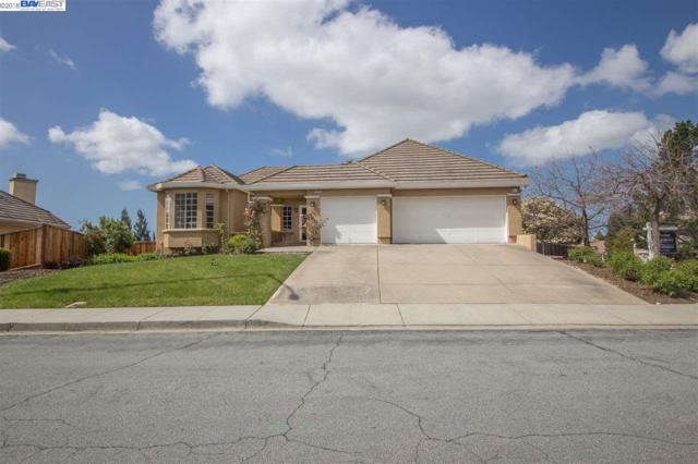 44551 Partlet Ct, Fremont, CA 94539 (#BE40816831) :: Brett Jennings Real Estate Experts