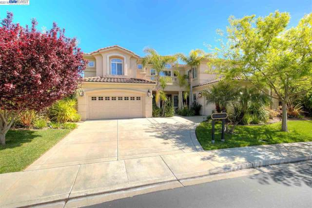 6031 Turnberry Dr, Dublin, CA 94568 (#BE40816972) :: Strock Real Estate