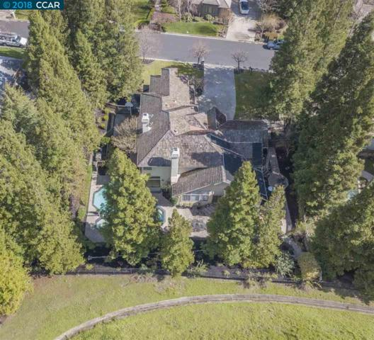 3363 Deer Hollow Dr, Danville, CA 94506 (#CC40817066) :: Perisson Real Estate, Inc.