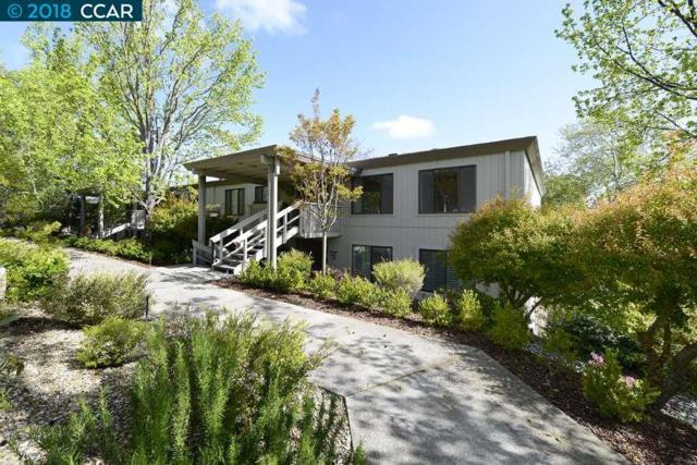 1160 Singingwood Ct., Walnut Creek, CA 94595 (#CC40817758) :: The Gilmartin Group