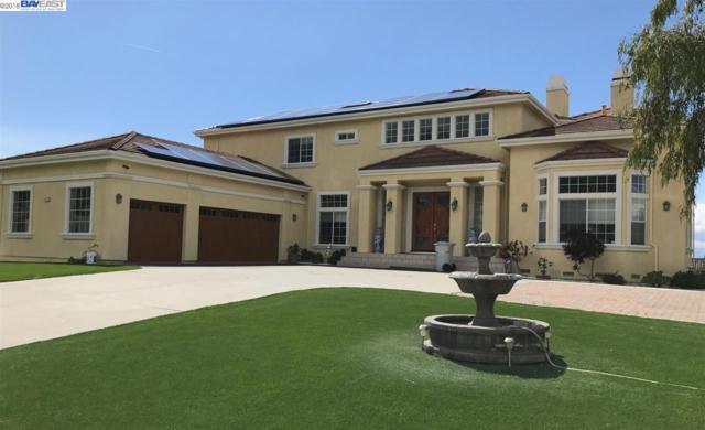 875 Yakima Dr, Fremont, CA 94539 (#BE40817845) :: Julie Davis Sells Homes