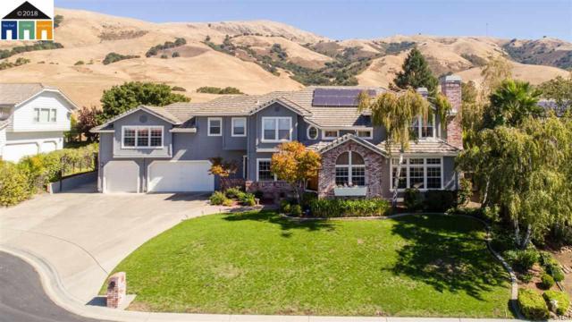 1875 Napa Ct, Fremont, CA 94539 (#MR40818107) :: von Kaenel Real Estate Group