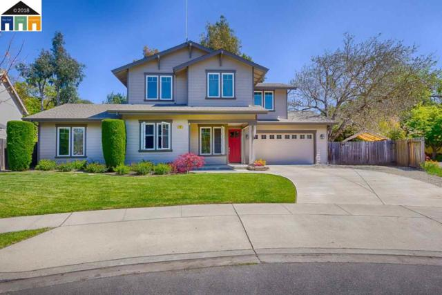 36 Autumn Creek Ct, Napa, CA 94559 (#MR40818348) :: The Gilmartin Group