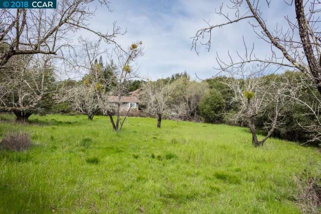 0 Adobe Lane, Orinda, CA 94563 (#CC40818516) :: von Kaenel Real Estate Group