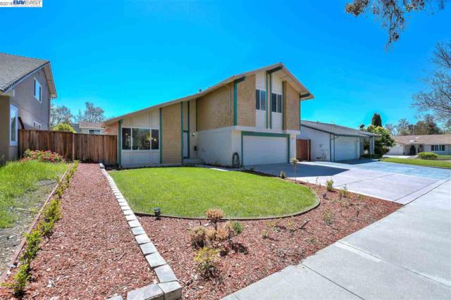 145 Tonopah Dr, Fremont, CA 94539 (#BE40818535) :: The Gilmartin Group