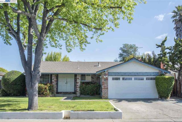 33782 Sinsbury Way, Union City, CA 94587 (#BE40818643) :: Brett Jennings Real Estate Experts