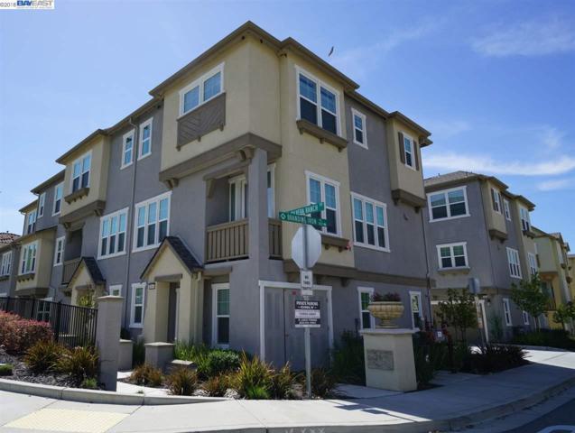 3644 Branding Iron Pl, Dublin, CA 94568 (#BE40818875) :: Intero Real Estate