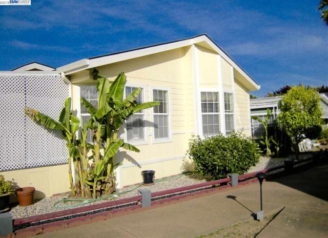228 Hula Circle, Union City, CA 94587 (#BE40819046) :: The Kulda Real Estate Group