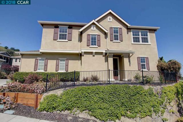 522 Falling Star Dr, Martinez, CA 94553 (#CC40819483) :: The Goss Real Estate Group, Keller Williams Bay Area Estates
