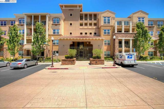 49002 Cinnamon Fern Cmn, Fremont, CA 94539 (#BE40819604) :: The Goss Real Estate Group, Keller Williams Bay Area Estates