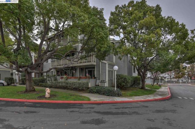 3648 Birchwood Ter, Fremont, CA 94536 (#BE40819637) :: Strock Real Estate