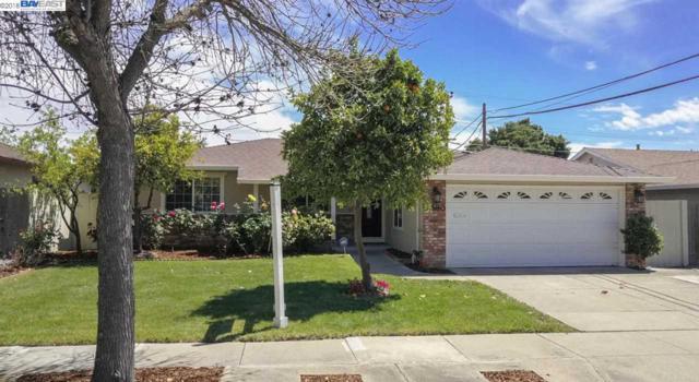4680 Nelson St, Fremont, CA 94538 (#BE40820955) :: The Goss Real Estate Group, Keller Williams Bay Area Estates