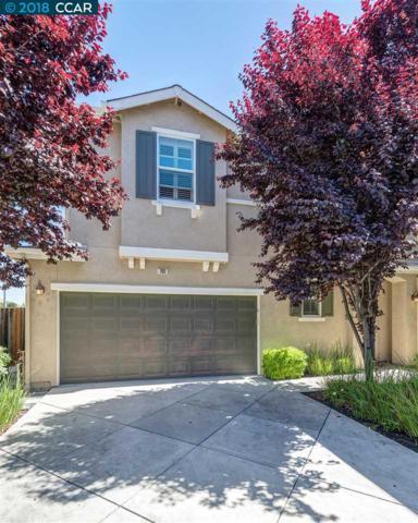 702 Falling Star Dr, Martinez, CA 94553 (#CC40821165) :: The Goss Real Estate Group, Keller Williams Bay Area Estates