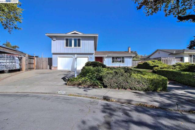35434 Severn Dr, Newark, CA 94560 (#BE40821178) :: The Kulda Real Estate Group