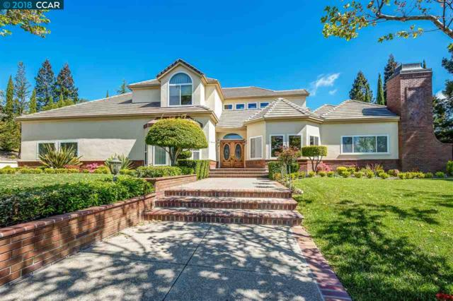 3320 Deer Hollow Dr, Danville, CA 94506 (#CC40821210) :: Strock Real Estate