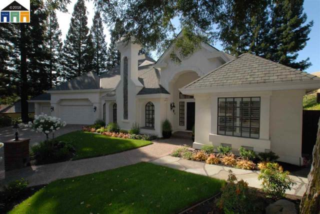 5037 Blackhawk Dr, Danville, CA 94506 (#MR40821641) :: Strock Real Estate