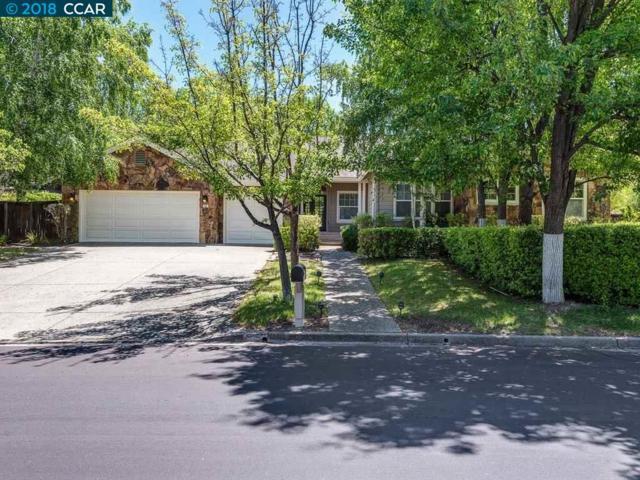 53 Brightwood Cir, Danville, CA 94506 (#CC40821748) :: Strock Real Estate