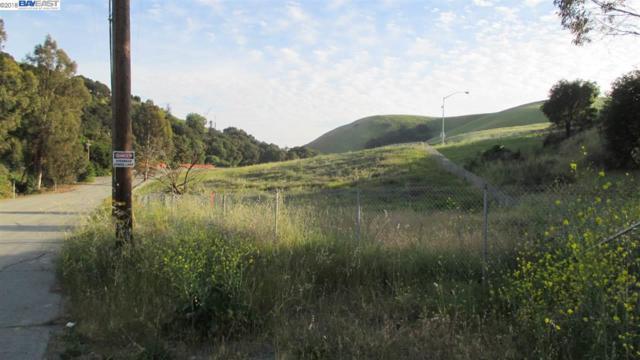 42155 Vargas Rd, Fremont, CA 94539 (#BE40821819) :: The Goss Real Estate Group, Keller Williams Bay Area Estates