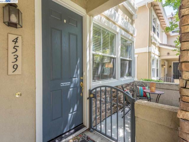 4539 Sandyford Ct, Dublin, CA 94568 (#BE40821904) :: The Goss Real Estate Group, Keller Williams Bay Area Estates