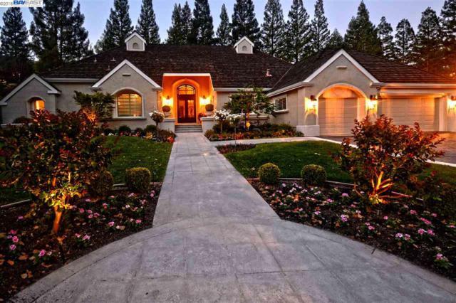 5219 Blackhawk Drive, Danville, CA 94506 (#BE40821958) :: Strock Real Estate