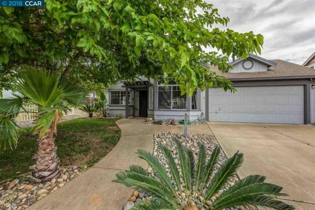 4705 Duarte Ave., Oakley, CA 94561 (#CC40822281) :: The Goss Real Estate Group, Keller Williams Bay Area Estates