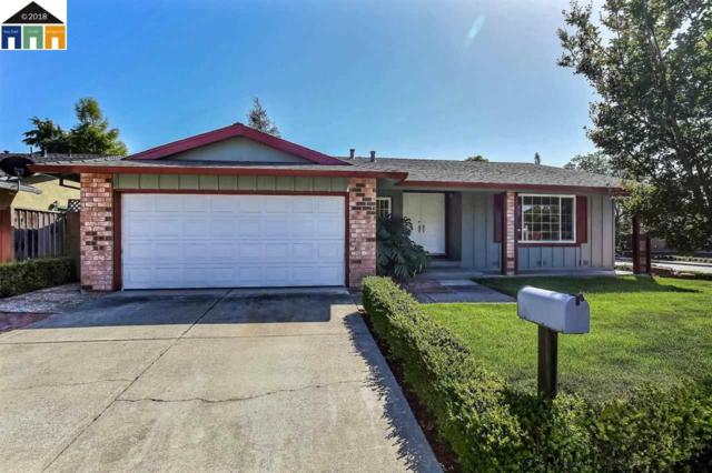 34711 Osage River Pl, Fremont, CA 94555 (#MR40822372) :: The Dale Warfel Real Estate Network