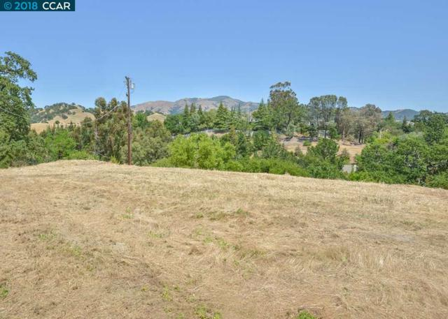 141 Dean Rd, Alamo, CA 94507 (#CC40822444) :: The Kulda Real Estate Group