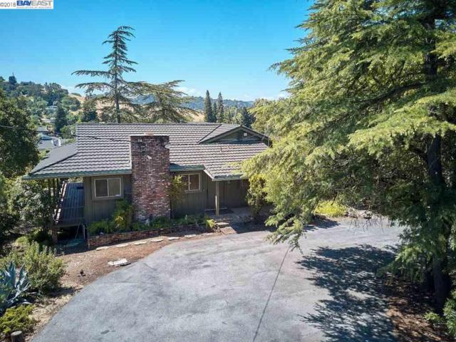 16910 La Selva Drive, Morgan Hill, CA 95037 (#BE40822607) :: The Gilmartin Group