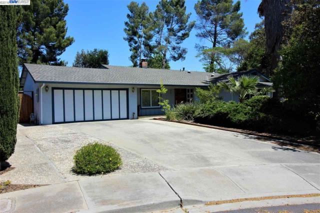 215 Flicker Ct, Livermore, CA 94551 (#BE40822817) :: The Dale Warfel Real Estate Network