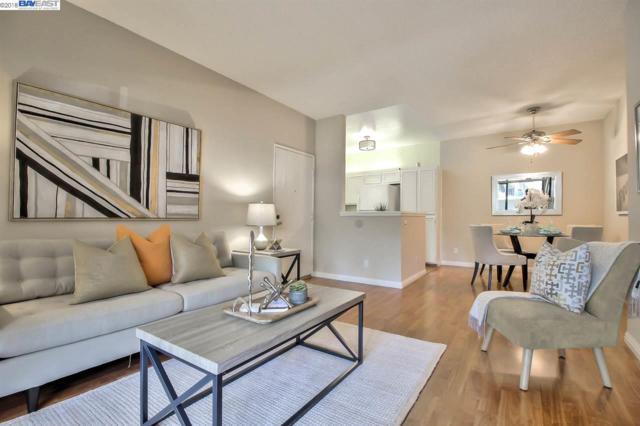 3674 Oakwood Ter, Fremont, CA 94536 (#BE40822876) :: Strock Real Estate