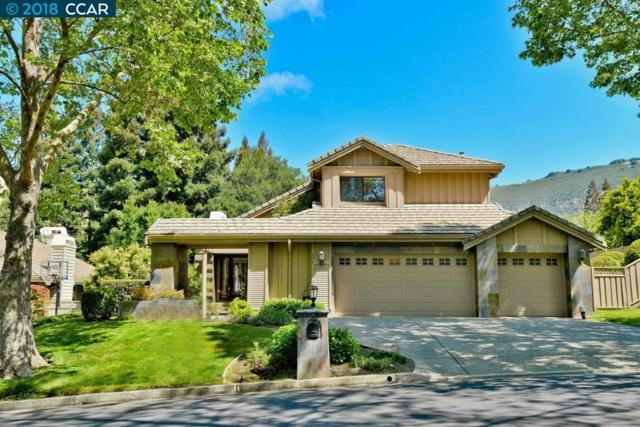 509 Buttonwood Dr, Danville, CA 94506 (#CC40822950) :: Strock Real Estate