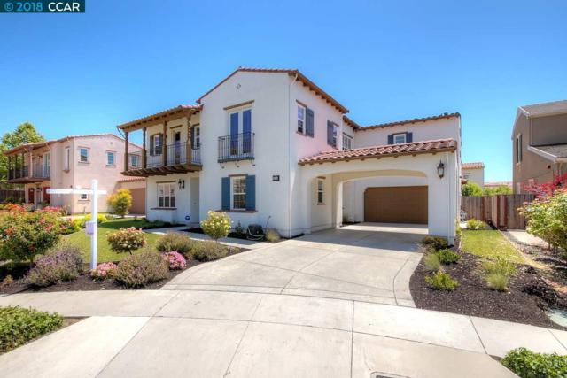 2374 Poppyview Ave, San Ramon, CA 94582 (#CC40822965) :: Strock Real Estate