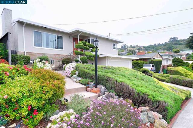6743 Snowdon Ave, El Cerrito, CA 94530 (#CC40823016) :: The Kulda Real Estate Group