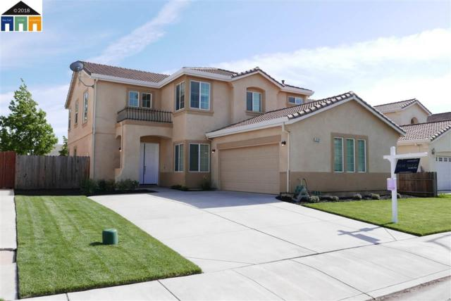 2178 Babcock Ln, Tracy, CA 95377 (#MR40823131) :: The Dale Warfel Real Estate Network
