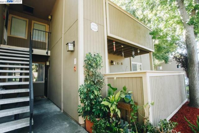 37276 Spruce Ter, Fremont, CA 94536 (#BE40824769) :: Julie Davis Sells Homes