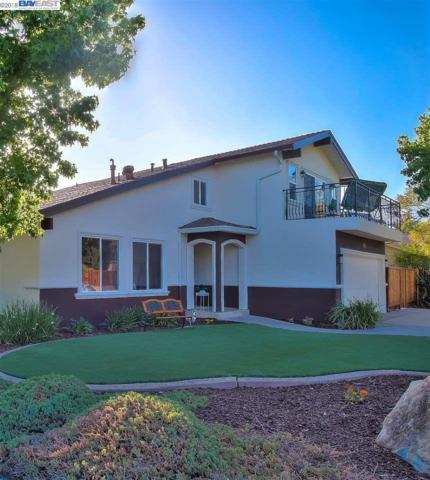 47899 Maya Street, Fremont, CA 94539 (#BE40824796) :: Julie Davis Sells Homes