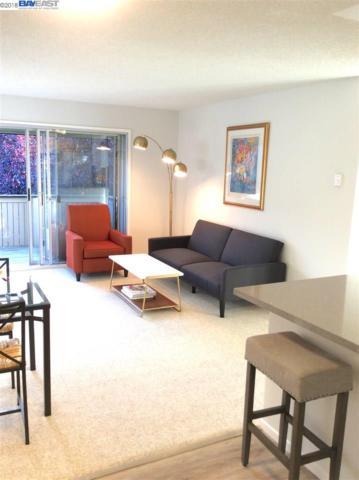 213 Boardwalk Ave Apt E, San Bruno, CA 94066 (#BE40825115) :: Strock Real Estate