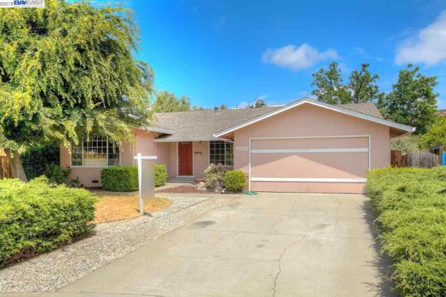 46509 Bradley Ct, Fremont, CA 94539 (#BE40825144) :: Julie Davis Sells Homes